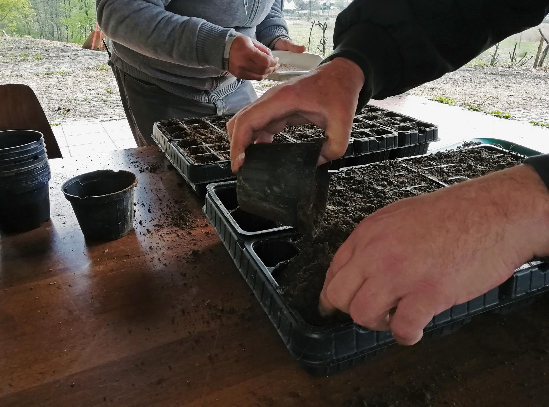biodiversità - cassette di terra e mani